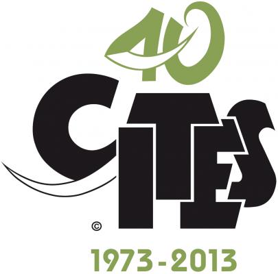 Cites 40 logo