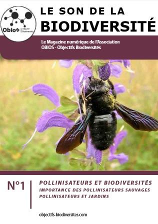 Le Son de la Biodiversité n°1 : Les pollinisateurs