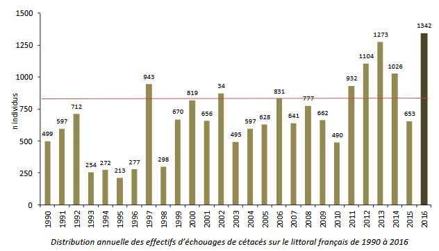 Distribution échouages cétacés 1990-2016 (réseau national échouage)