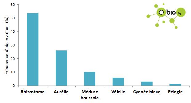 Frequences meduses estuaire janvier 2018