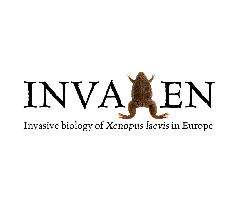 Logo invaxen