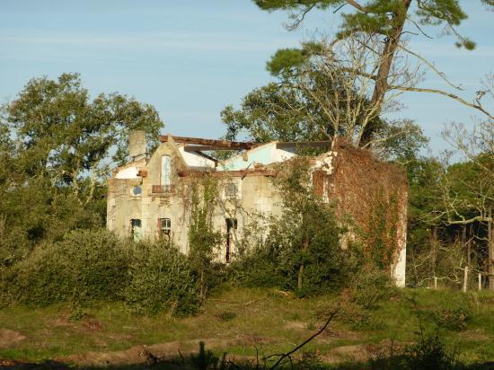 Maison forestière de Negrevaux