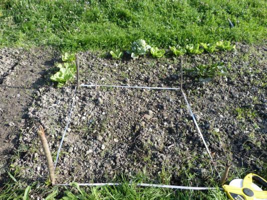 Quadrat pour l'étude des vers de terre